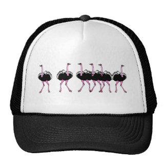 Ostrich Mesh Hat