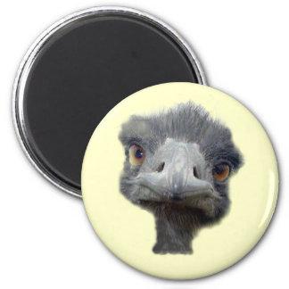Ostrich head 6 cm round magnet