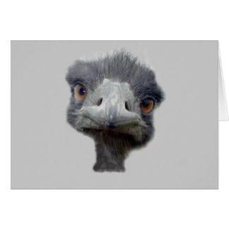 Ostrich head card