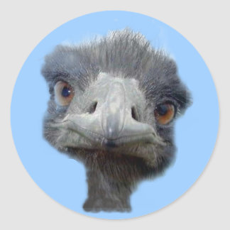 Ostrich head round sticker