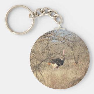 Ostrich Key Chain, African Safari Collection Key Ring