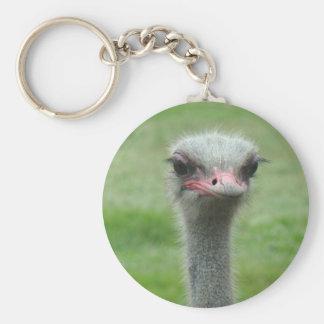 Ostrich Keychains