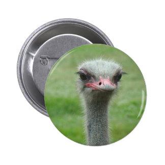 Ostrich Pin