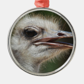 Ostrich Silver-Colored Round Decoration