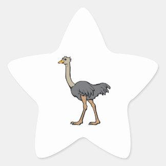 Ostrich Star Sticker
