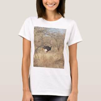 Ostrich T-Shirt, African Safari Collection T-Shirt