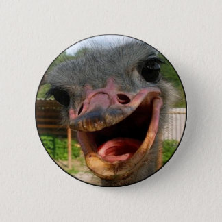 Ostrich What's Up Round Button