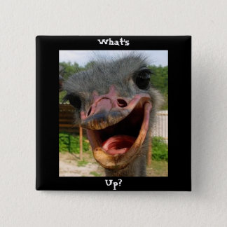 Ostrich What's Up Square Pin-Back Button