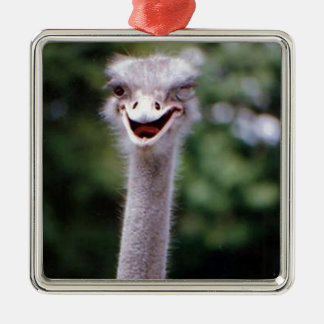 Ostrich Winking - Funny Christmas Tree Ornament