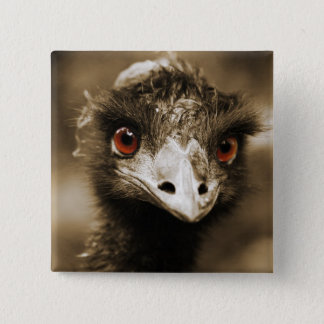 Ostriches Look button