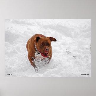 Otis in the Snow Print