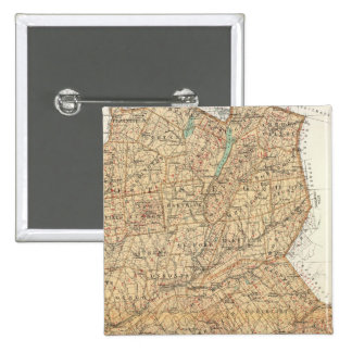 Otsego, Delaware counties 15 Cm Square Badge