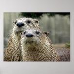 Otter Absurdity Poster