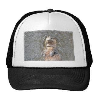 Otter Back Float Cap