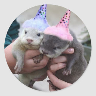 otter birthday classic round sticker