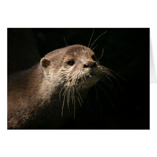 Otter Card