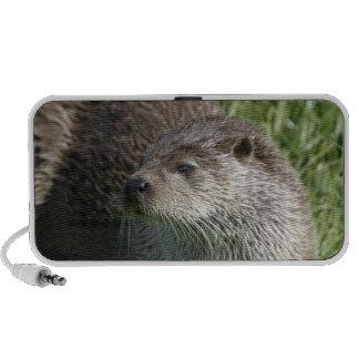 Otter Doodle Speakers