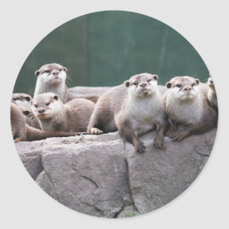 Otter family classic round sticker