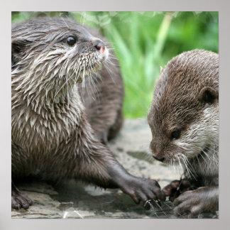 Otter Habitat Poster