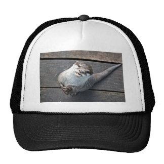 Otter Mesh Hat