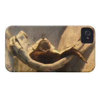 Otter in a Hammock iPhone 4 Case