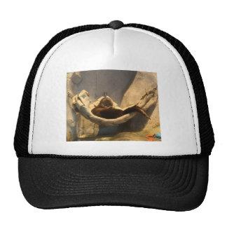 Otter In Hammock Trucker Hats