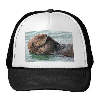 otter in prayer mesh hats