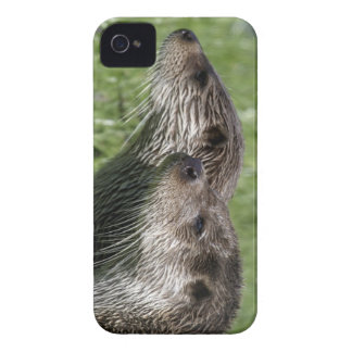 Otter iPhone 4 Case-Mate ID iPhone 4 Case