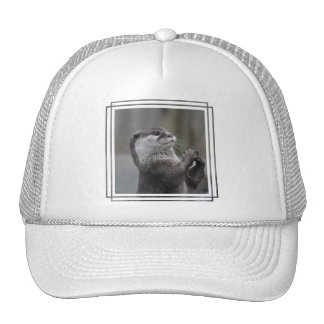 Otter Mastermind Baseball Hat