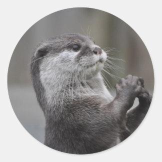 Otter Mastermind Sticker