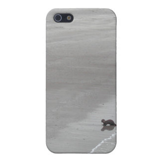 Otter on a beach in Ireland. iPhone 5 Cases