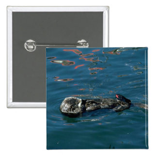 Otter On Back In Water 15 Cm Square Badge