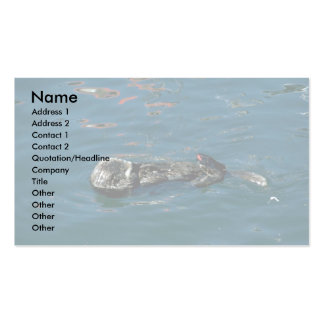 Otter On Back In Water Double-Sided Standard Business Cards (Pack Of 100)