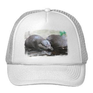 Otter Pair Baseball Hat