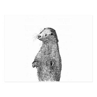 Otter Postcard