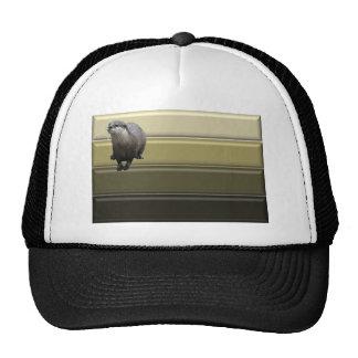 Otter Pride Cap