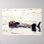 Otter Raft Poster