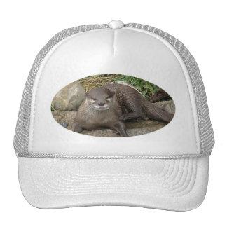 Otter Resting Baseball Hat