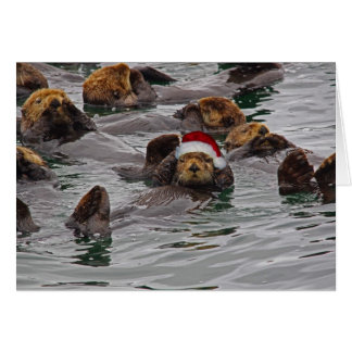 Otter Santa Christmas card