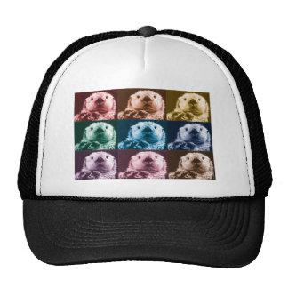 Otter See Cap