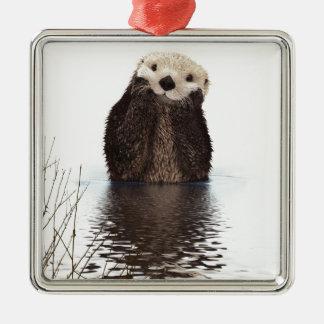 Otter Silver-Colored Square Decoration