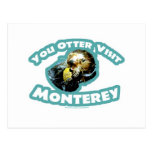 Otter visit Monterey