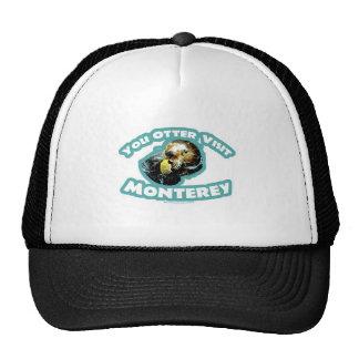 Otter visit Monterey Hat