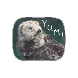 Otter YUM Jelly Belly Candy Tin