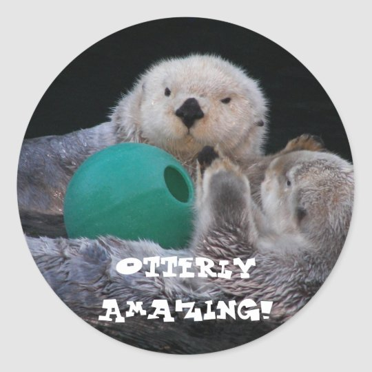 Otterly Amazing Sea Otters Photo Classic Round Sticker