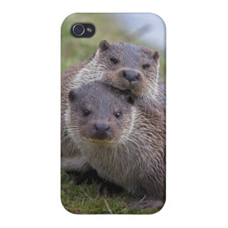 Otterly in Love iPhone 4 Speck Case iPhone 4/4S Cases