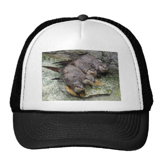 Otters 4 in a Row Ball Cap