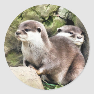 OTTERS CLASSIC ROUND STICKER