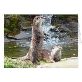 Otters enjoying the sun card