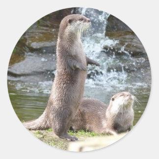 Otters enjoying the sun round sticker